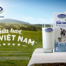 Nên chọn sữa tươi hay sữa bột cho bé uống thì tốt hơn?