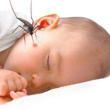 Cách chống muỗi cực hiệu quả cho bé mùa hè