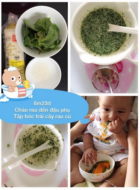 Chia sẻ thực đơn ăn dặm lý tưởng cho bé 6 tháng tuổi cháo rau dền đậu phụ