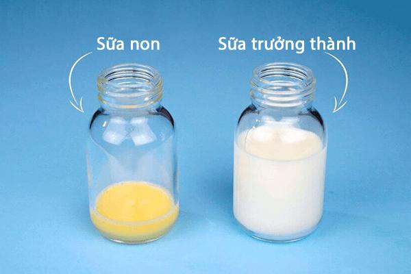 sữa non goodhealth cho trẻ sơ sinh