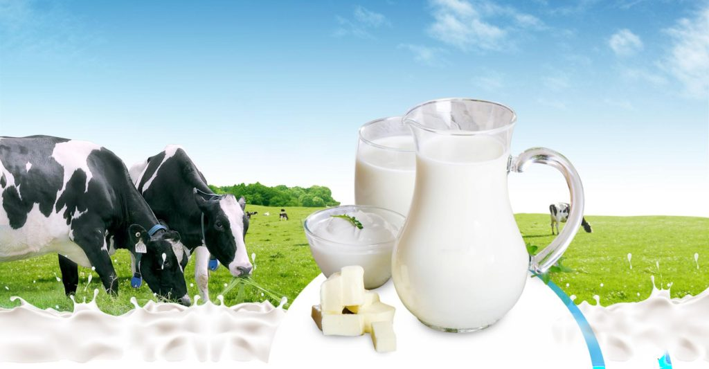 Sữa tươi nào tốt cho trẻ 3 tuổi cải thiện cân nặng và chiều cao