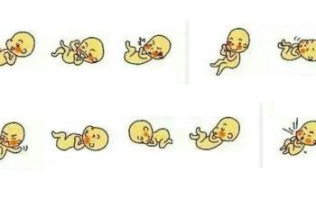 """""""Giải mã"""" ý nghĩa của những cú đạp, cú trườn của thai nhi trong bụng mẹ"""