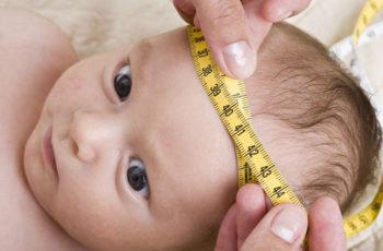 Trẻ sinh ra đầu càng to tương lai càng thông minh và thành công